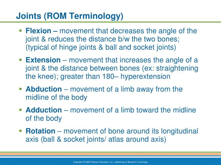 Joints rom terminology