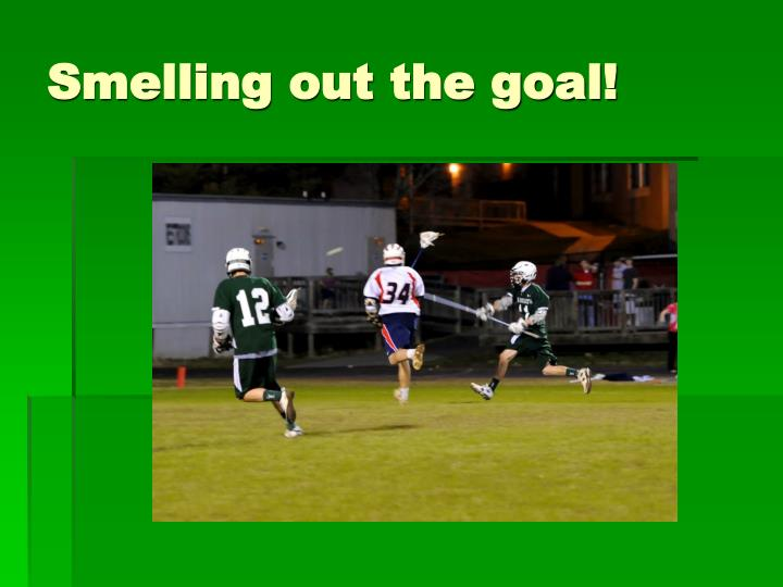 Smelling out the goal!