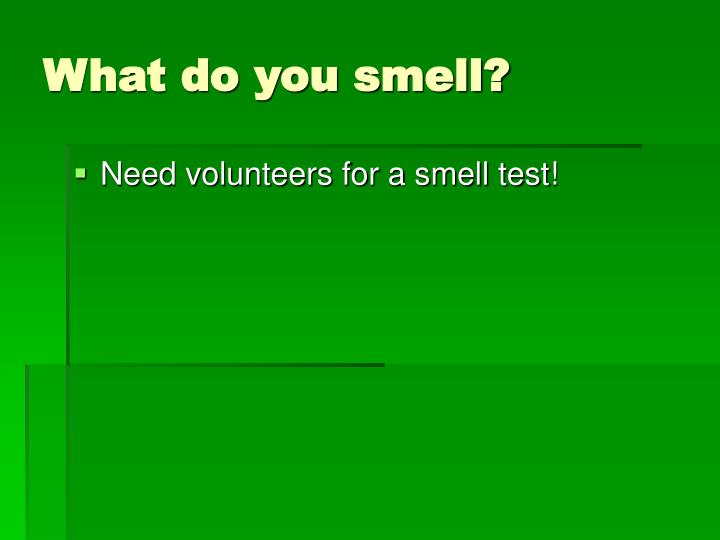 What do you smell?