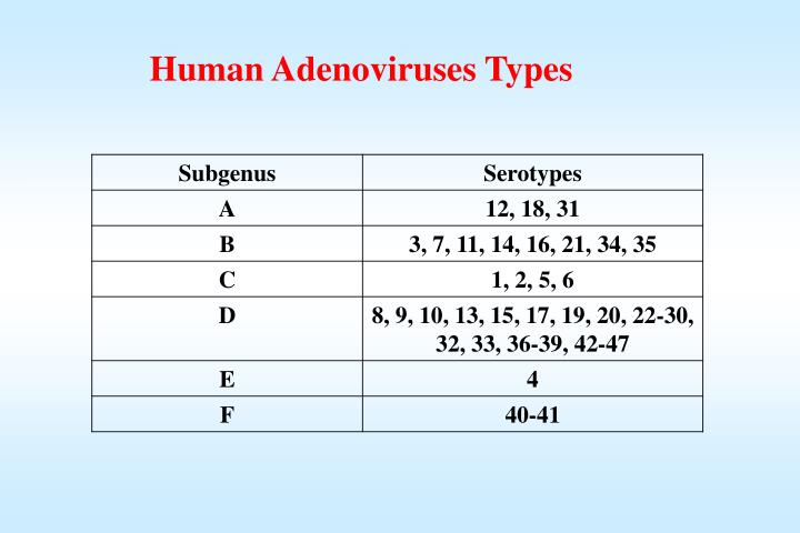 Human Adenoviruses Types