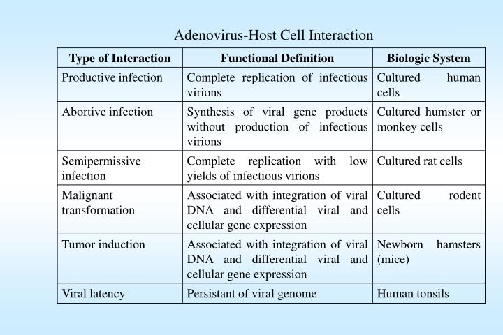 Adenovirus-Host Cell Interaction