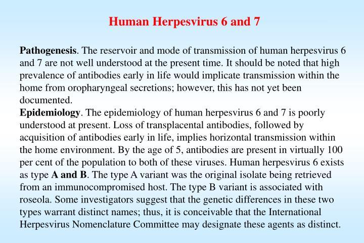 Human Herpesvirus 6 and 7