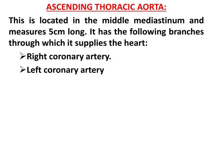 ASCENDING THORACIC AORTA: