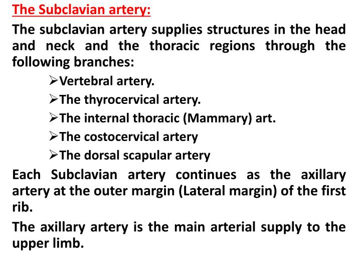 The Subclavian artery: