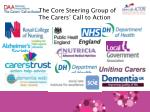 the core steering group of the carers call to action