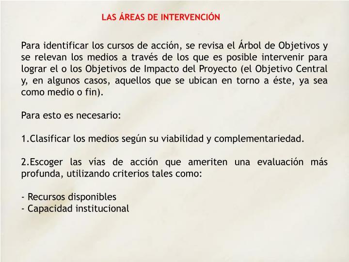 LAS ÁREAS DE INTERVENCIÓN