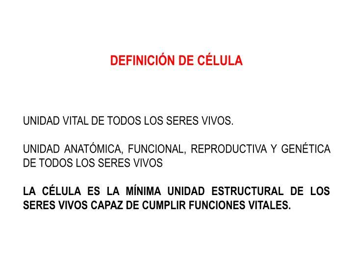 DEFINICIÓN DE CÉLULA