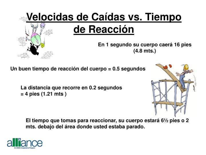Velocidas de Caídas vs. Tiempo de Reacción