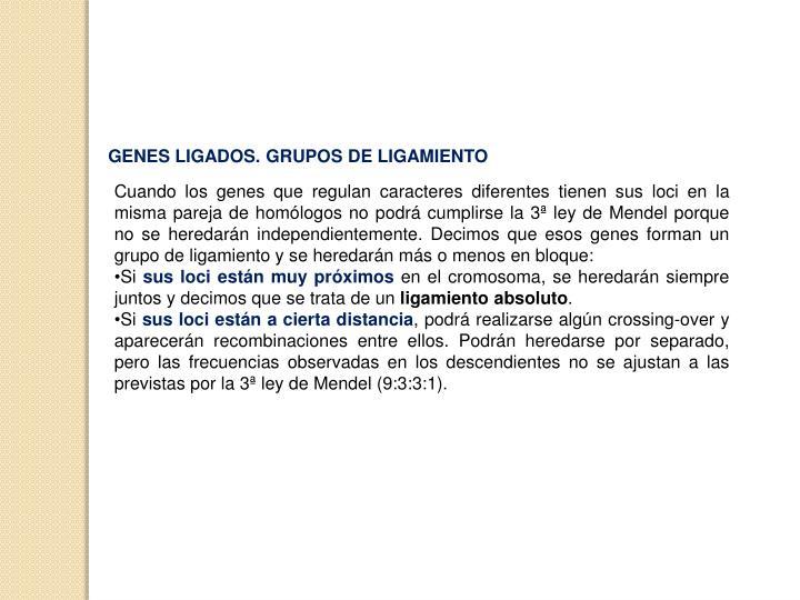 GENES LIGADOS. GRUPOS DE LIGAMIENTO
