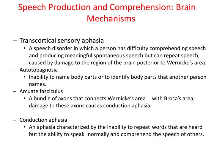 Speech Production and Comprehension: Brain Mechanisms