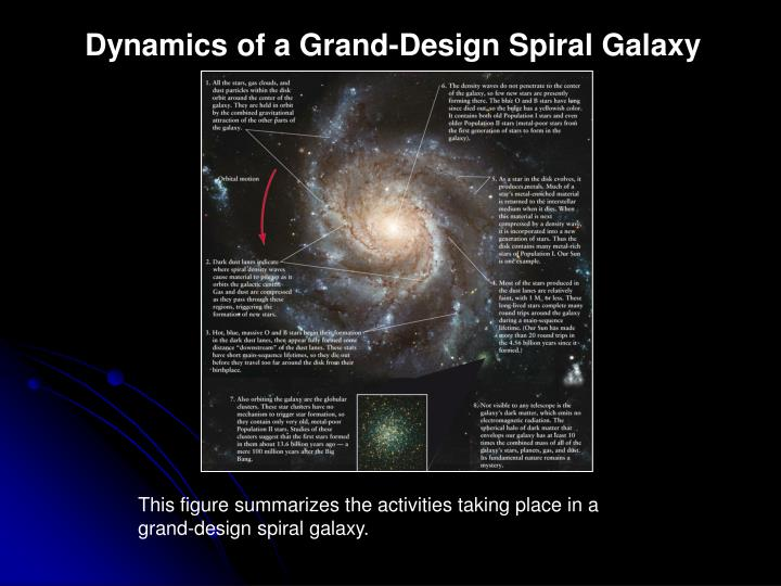 Dynamics of a Grand-Design Spiral Galaxy