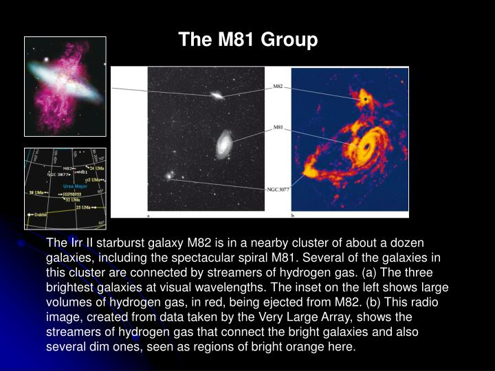 The M81 Group
