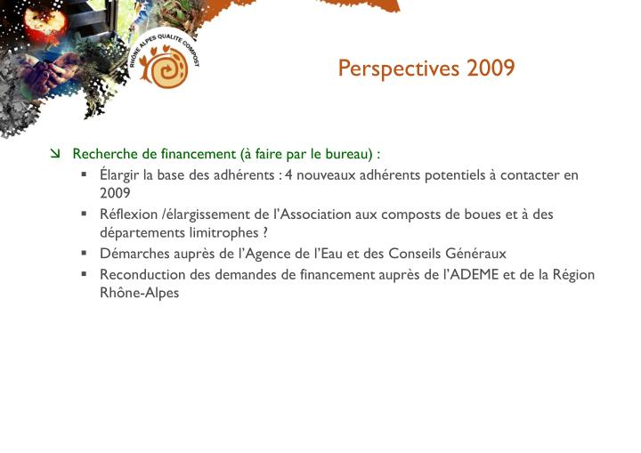Perspectives 2009