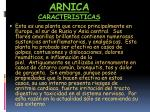 arnica caracteristicas
