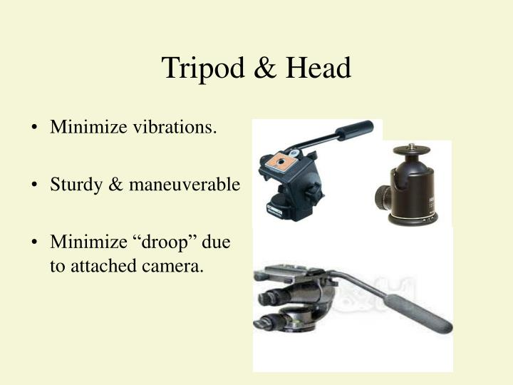 Tripod & Head