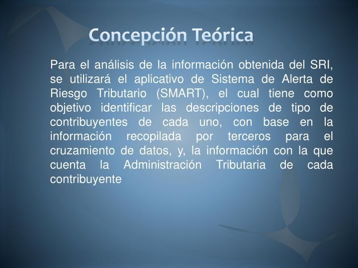 Concepción Teórica
