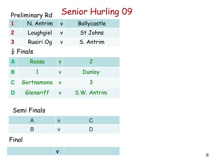 Senior Hurling 09