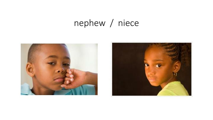 nephew  /  niece