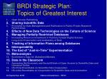 brdi strategic plan topics of greatest interest