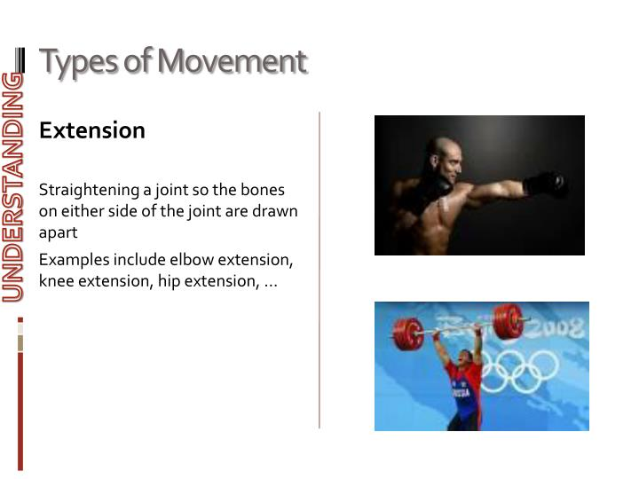 Types of Movement