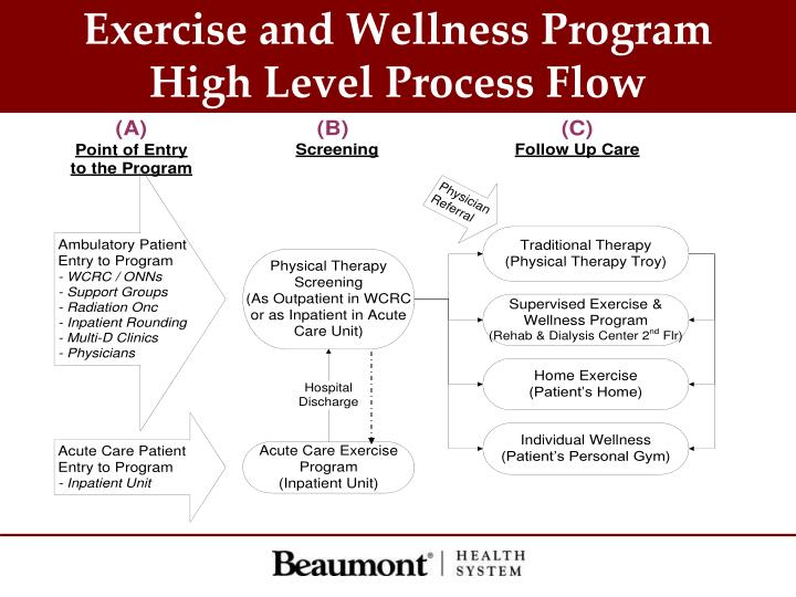 Exercise and Wellness Program