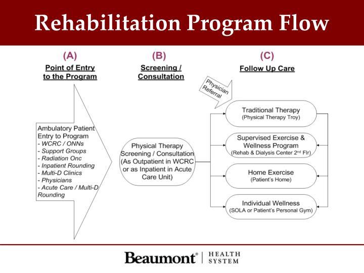 Rehabilitation Program Flow