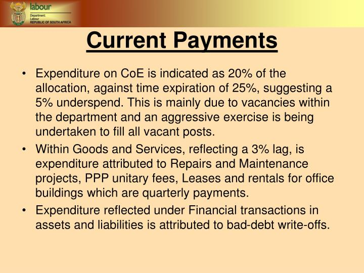 Expenditure on CoE is indicated as 20% of the allocation, against time expiration of 25%, suggesting a 5% underspend. This is mainly due to vacancies within the department and an aggressive exercise is being undertaken to fill all vacant posts.