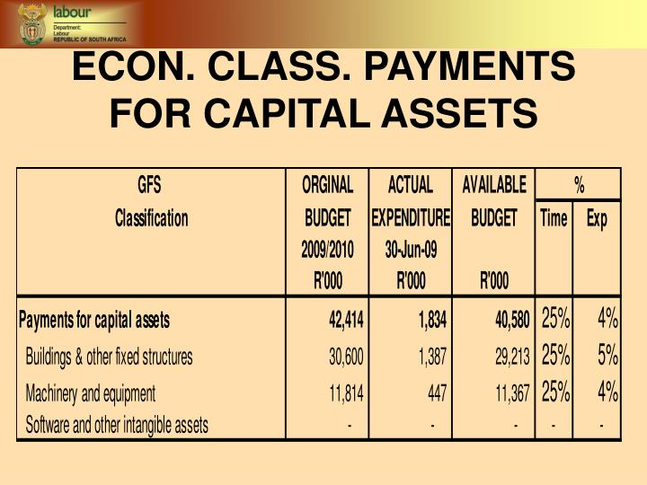 ECON. CLASS. PAYMENTS FOR CAPITAL ASSETS