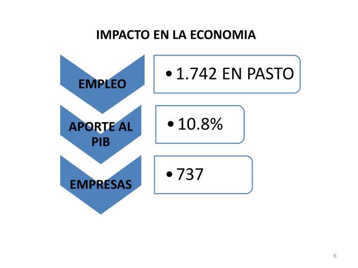 IMPACTO EN LA ECONOMIA
