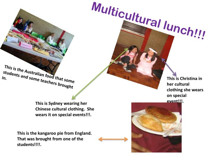 Multicultural lunch
