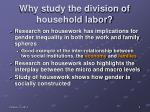 why study the division of household labor