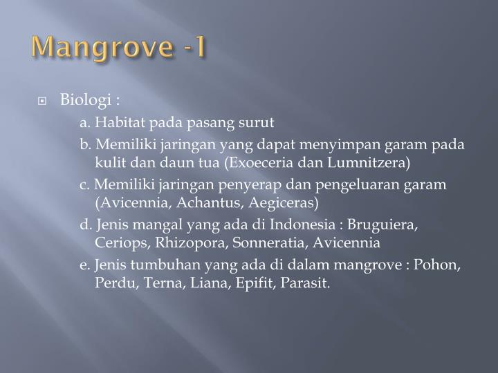 Mangrove -1