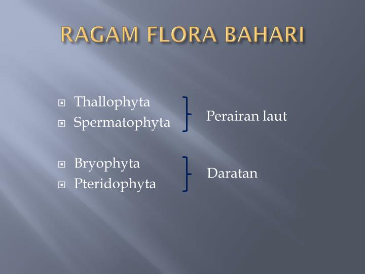 RAGAM FLORA BAHARI