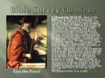 bible survey chronicles2