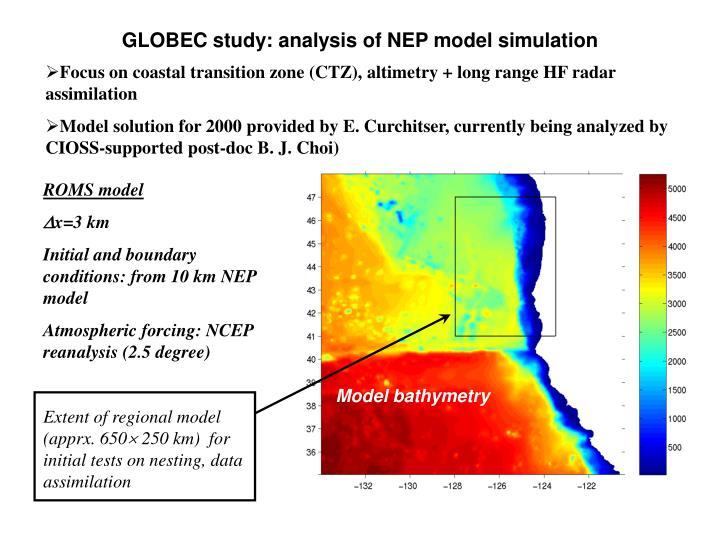 GLOBEC study: analysis of NEP model simulation