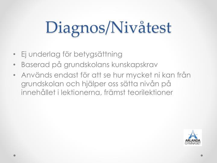 Diagnos/Nivåtest