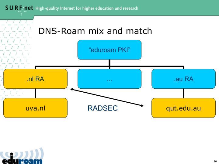DNS-Roam mix and match