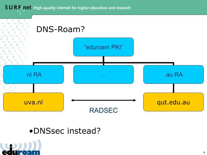 DNS-Roam?