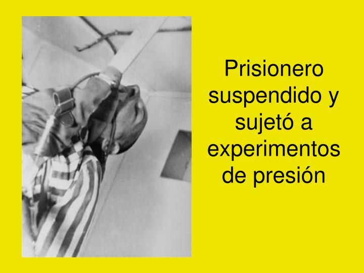 Prisionero suspendido y sujetó a experimentos de presión