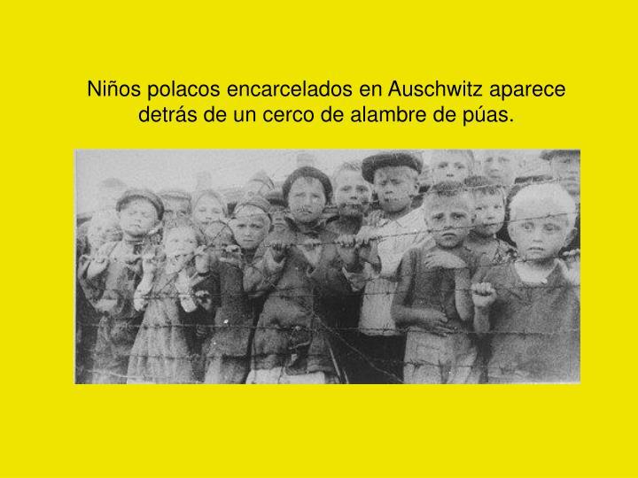 Niños polacos encarcelados en Auschwitz aparece detrás de un cerco de alambre de púas.