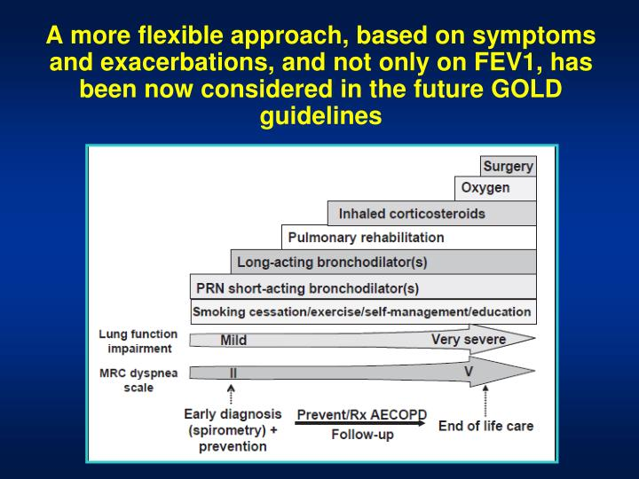 A more flexible approach, based on symptoms and exacerbations, and not only on FEV1, has been now considered in the future GOLD guidelines