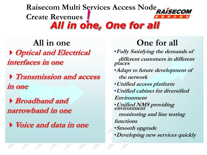 Raisecom Multi Services Access Node