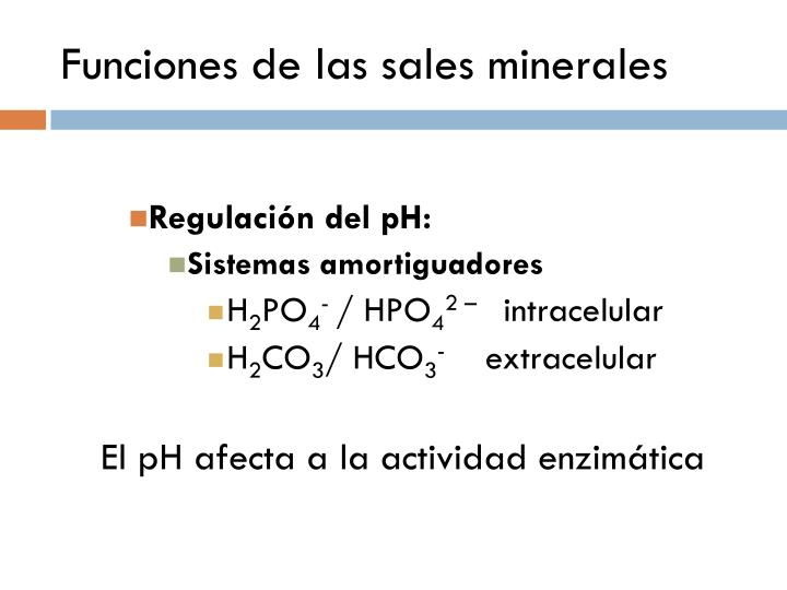 Funciones de las sales minerales