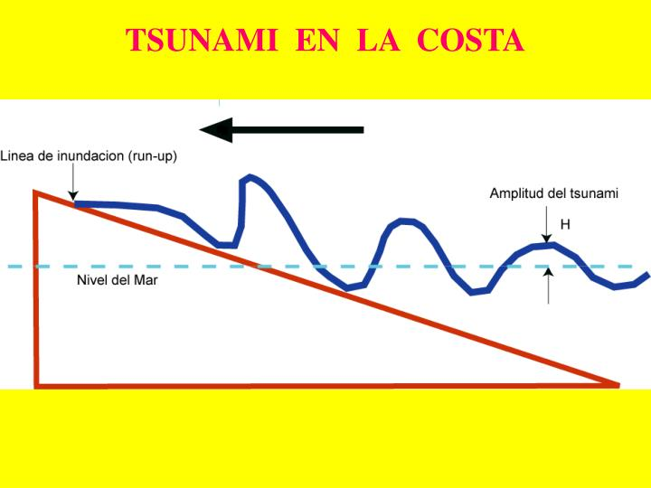 TSUNAMI  EN  LA  COSTA