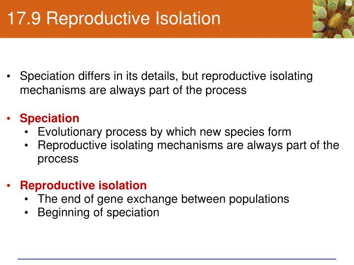 17.9 Reproductive Isolation