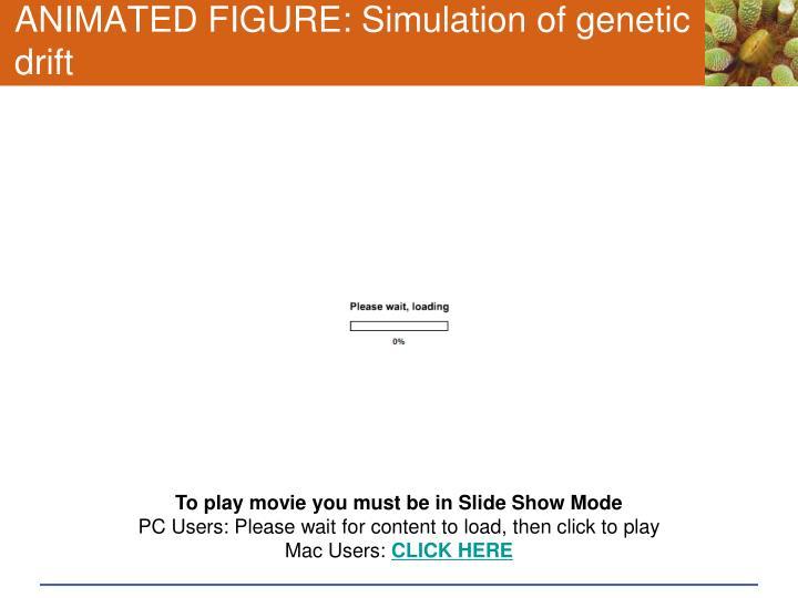 ANIMATED FIGURE: Simulation of genetic drift