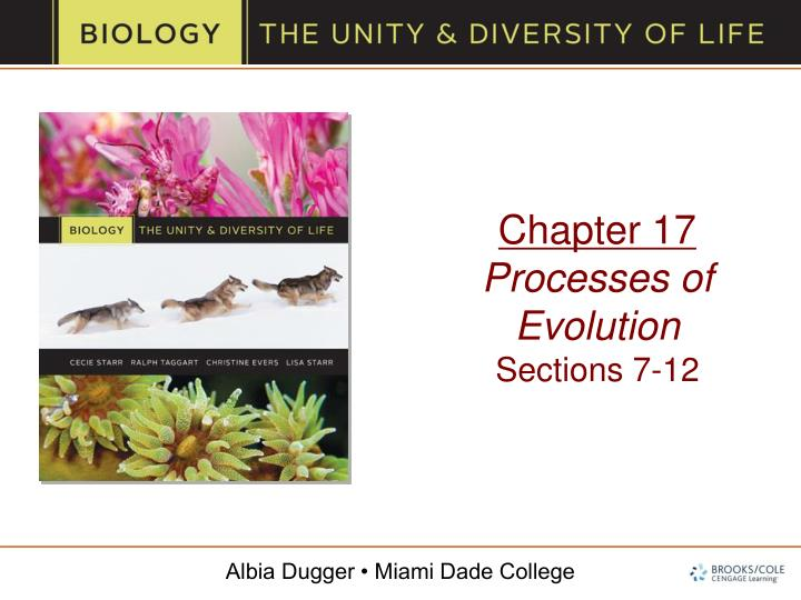 Chapter 17 processes of evolution sections 7 12