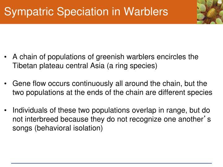 Sympatric Speciation in Warblers
