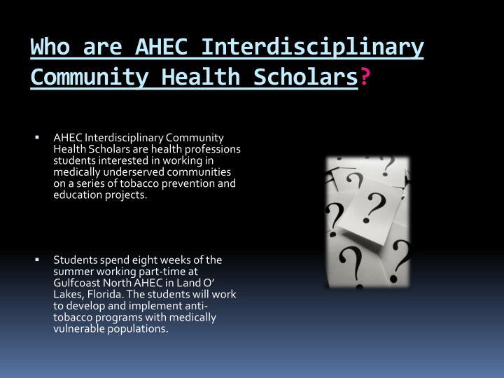 Who are AHEC Interdisciplinary Community Health Scholars