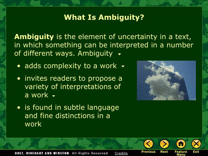 What Is Ambiguity?